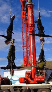 Aerial crane rehearsals